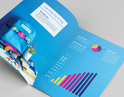 Brochure.Yola Institute