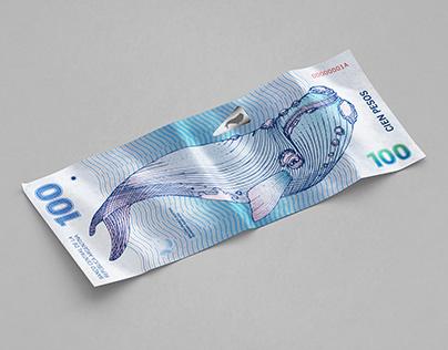 Rediseño Papel Moneda Argentino