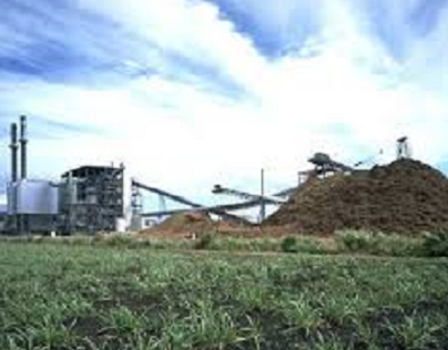 An Introduction to Biomass Power