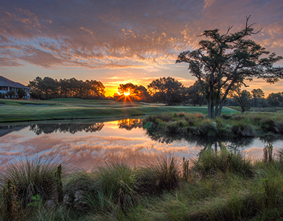 Golf Landscapes 2014