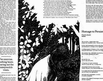 New York Times Op-Ed Pages