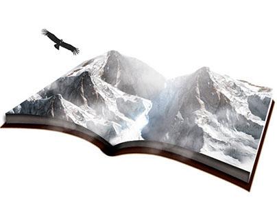 Concepto y Gráfica Book