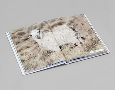 COPADE 50Y Book