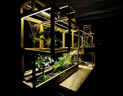 Plant-in City - Installation