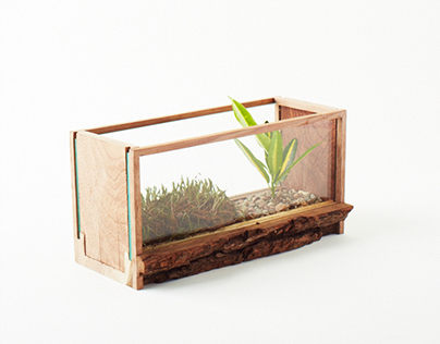 Plant-in MINI - Walnut 1st Edition