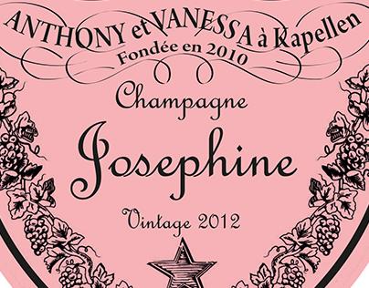 Babyshower champagne bottle labels