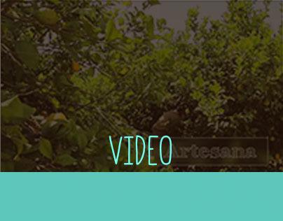 Vídeo sobre empresa Ecológica