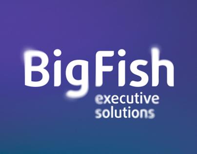 BigFish, executive search company