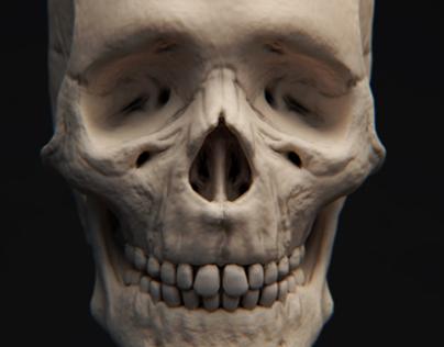 Skeleton Remastered