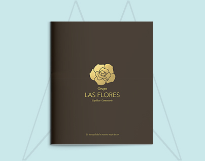 Bi-fold / Brochure / Small brochure