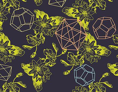 nature&geometry patterns