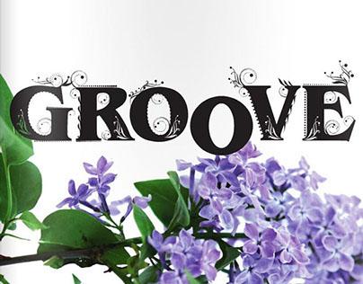 Groove 1/2014