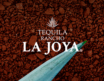 La Joya - Website