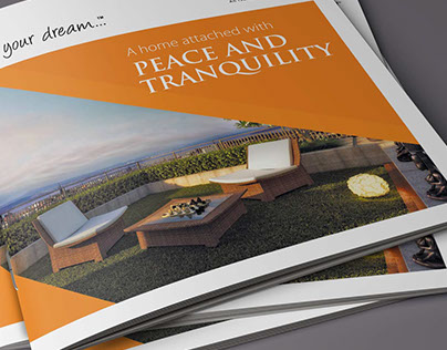 Potential Brochure