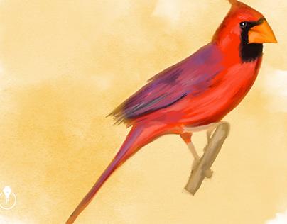 Watercolor Painting in Adobe Photoshop