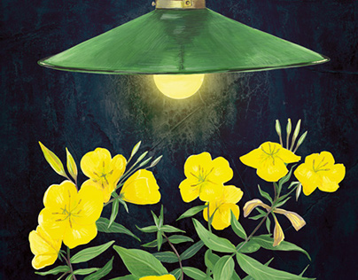 Oenothera and a lamp