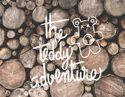 THE TEDDY ADVENTURE