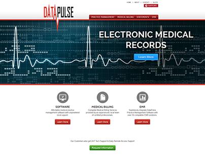 DataPulse Website Revamp