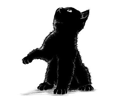 Panther Blackcat