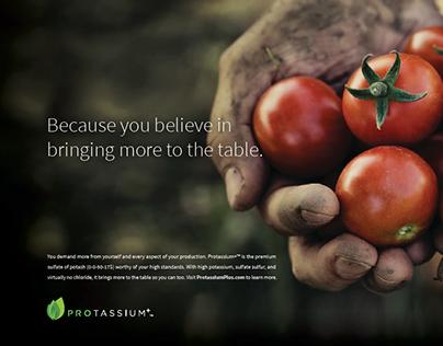 Protassium+ Print Advertising