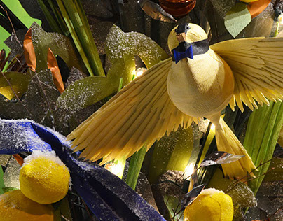 Anthropologie Window Display | Birds of a Feather