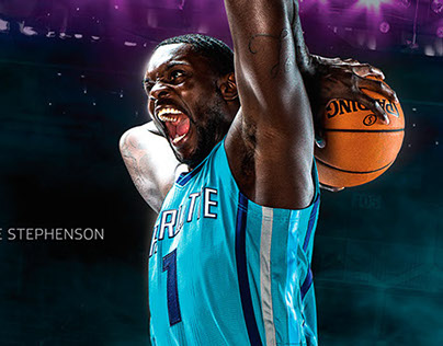 charlotte hornets / the reintroduction