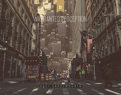 Warranted perception