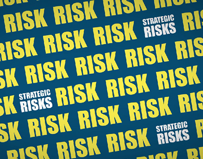 Strategic Risk in Disaster Planning