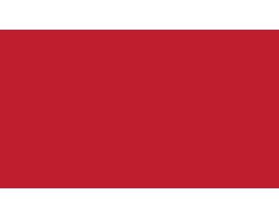 Logo design animation