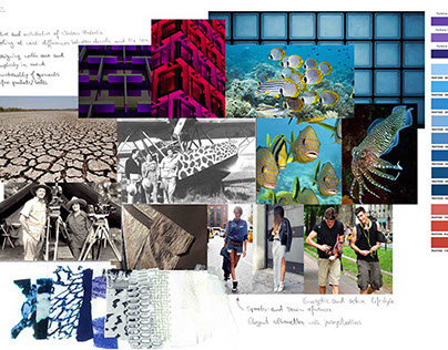 Work Portfolio, including 7 collections, 1 uni project