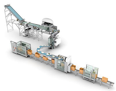 Pattyn Packing Lines