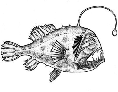 Peixe Abissal