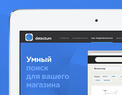 Detectum. Logo & Web.