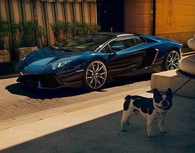 Lamborghini Magazine Editorial