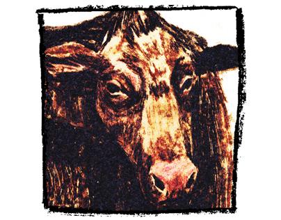 Cow_boys