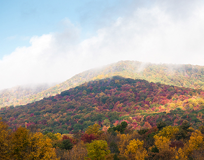 Fall in the Appalachians