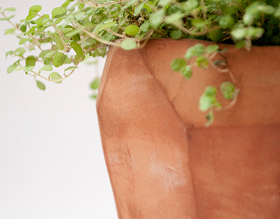 TERRACOTTA natural beauty_plant home