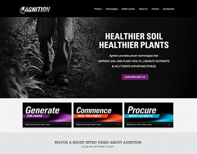 Agnition Website Design