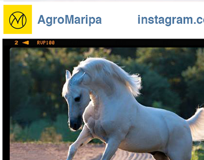 Agro Maripá - Facebook