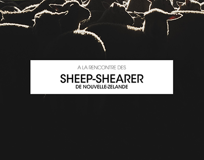 A la rencontre des sheep—sheaper