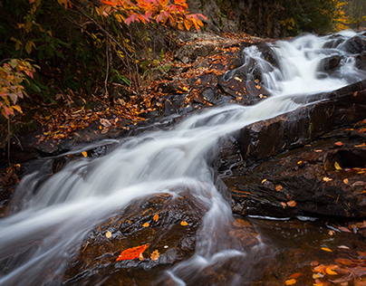 The Waterfalls of Straight Branch in Autumn