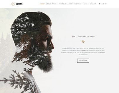 Call To Action Section - Spark WordPress Theme