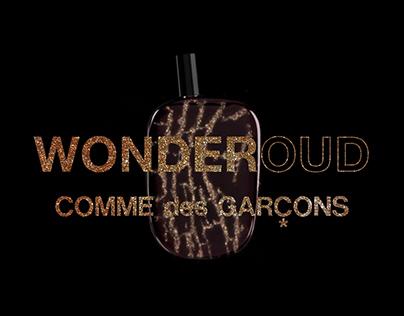 COMME des GARÇONS WONDEROUD
