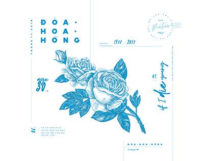 Doa hoa hong_personal project