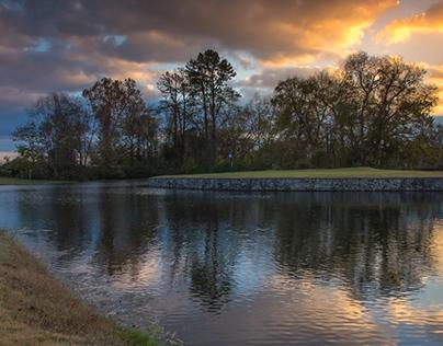 Bluegrass in Autumn