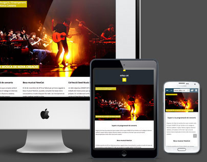 Responsive Website / Visual identity / ADEP.CAT