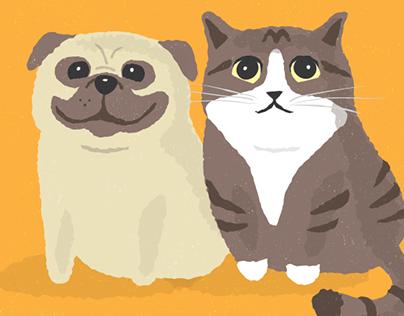Dante & Pablo (Pug & Cat)