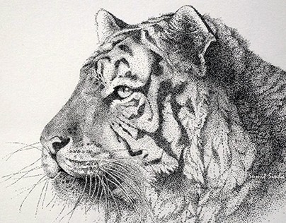 Stippling with Pen on Paper