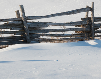 Clôtures de lisses / Rail Fences