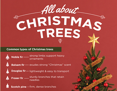 All About Christmas Trees Infographic